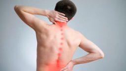 Đau lưng là căn bệnh xương khớp có thể điều trị hiệu quả bằng bấm huyệt