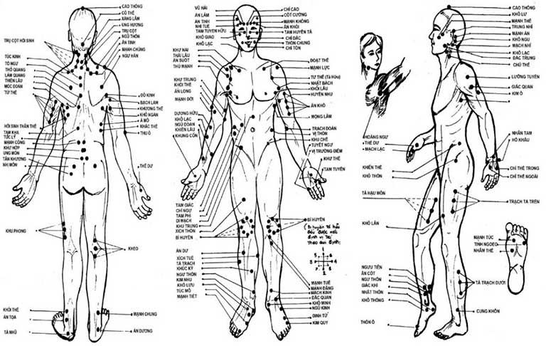 Những huyệt đạo trên cơ thể liên hệ với nhau theo một hệ thống nhất