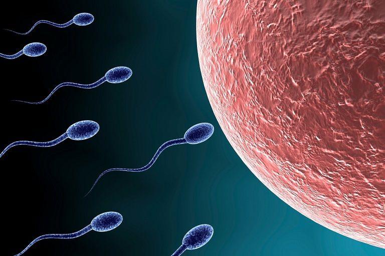 Chất lượng tinh trùng có bị ảnh hưởng