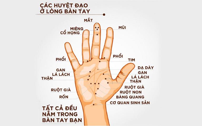 Day ấn mỗi ngón tay trên bàn tay đều có tác dụng điều trị các bệnh lý nhất định