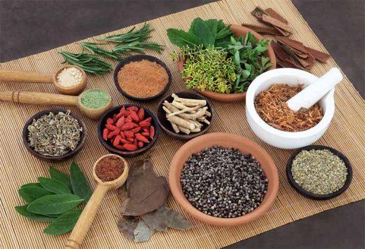 Có rất nhiều các bài thuốc Đông Y điều trị Viêm mũi hiệu quả