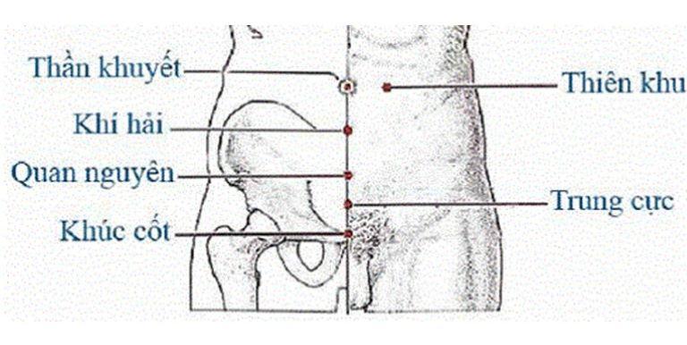 Các huyệt chữa tiểu đêm ở vùng bụng dưới