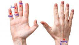 Vị trí các huyệt trị mẩn ngứa trên bàn tay