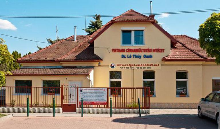 Bác sĩ Lê Thúy Oanh cấy chỉ đã mở bệnh viện tư tại thủ đô Budapest - Hungary và lấy tên là Viện Cấy chỉ phục hồi chức năng Việt Nam
