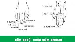 Các huyệt trị viêm amidan trên tay
