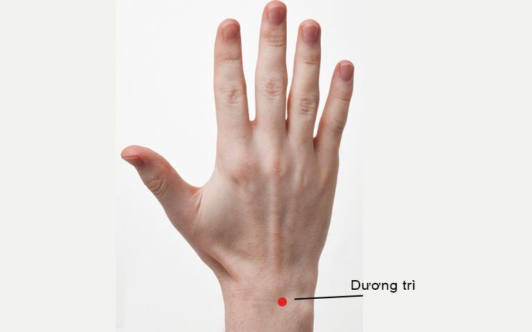 Vị trí huyệt Dương trì trên bàn tay