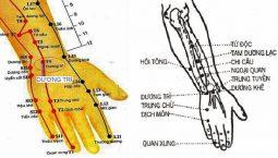 Hình ảnh vị trí huyệt Dương Trì trên tay phải