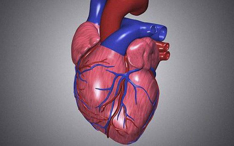Sức co bóp tim ảnh hưởng đến chỉ số huyết áp