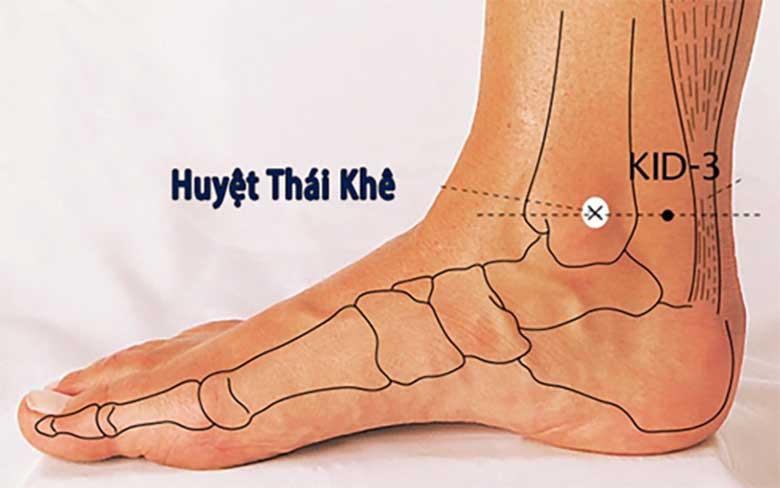 Hướng dẫn châm cứu huyệt Thái Khê