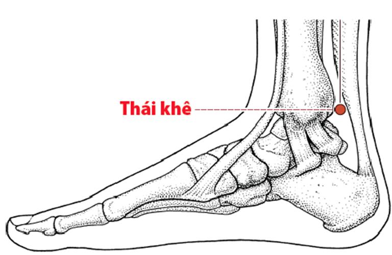 Huyệt Thái Khê có đặc tính gì?