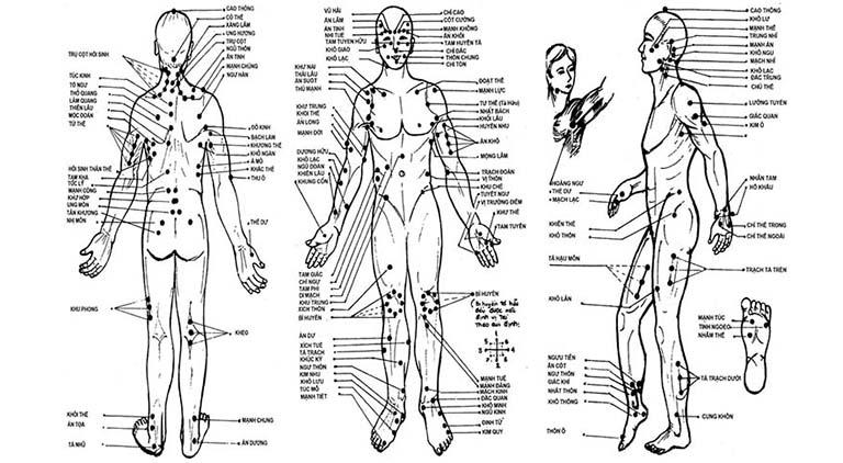 Châm cứu giáp ất kinh đã giúp hệ thống các huyệt theo từng bộ phận trên cơ thể