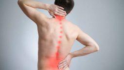 Tình trạng đau nhức xương sống lưng vốn thường gặp phải ở người cao tuổi, tuy nhiên hiện nay đang ngày càng có xu hướng trẻ hóa.