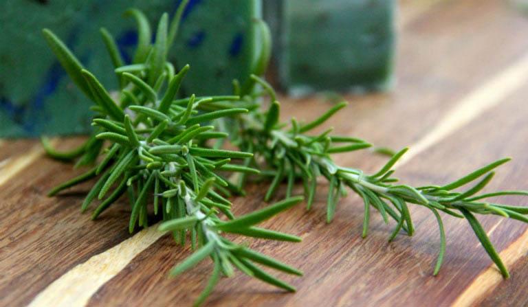 Hương thảo là loại dược liệu có thể dễ dàng tìm mua