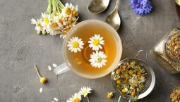 Trà hoa cúc có tác dụng giảm triệu chứng đau đầu và cải thiện chất lượng giấc ngủ