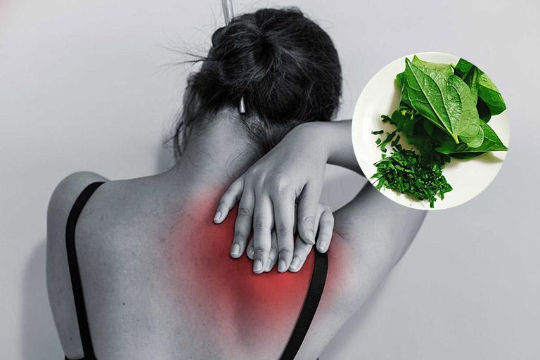 Ngải cứu - Lá lốt - Muối là bài thuốc dân gian chữa đau vai gáy
