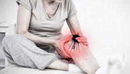 Thoái hóa khớp và phương pháp điều trị