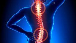 Các cơn đau nhức do thoát vị nội xốp thường khu trú ở một vị trí nhất định