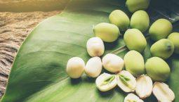 Hạt sen có nhiều công dụng như an thần, bổ tỳ, dưỡng tâm, ích thận, lợi thủy, cải thiện chức năng thận và bồi bổ sức khỏe