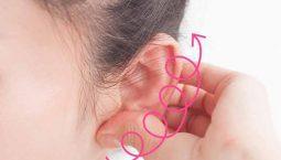 Hướng dẫn xoa bóp vành tai nâng cao sức khoẻ