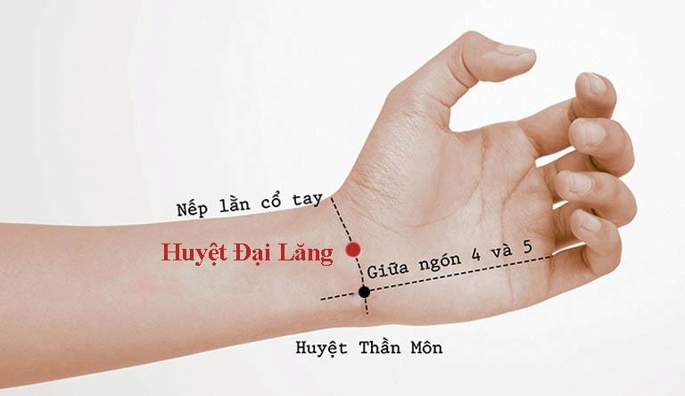 Hình ảnh huyệt Đại Lăng trên cổ tay