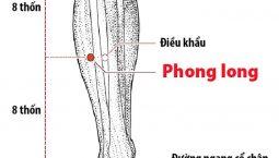Hình ảnh huyệt Phong Long