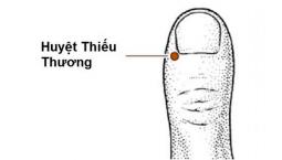 Huyệt Thiếu Thương: Vị trí, Công dụng và cách châm cứu bấm huyệt trị bệnh