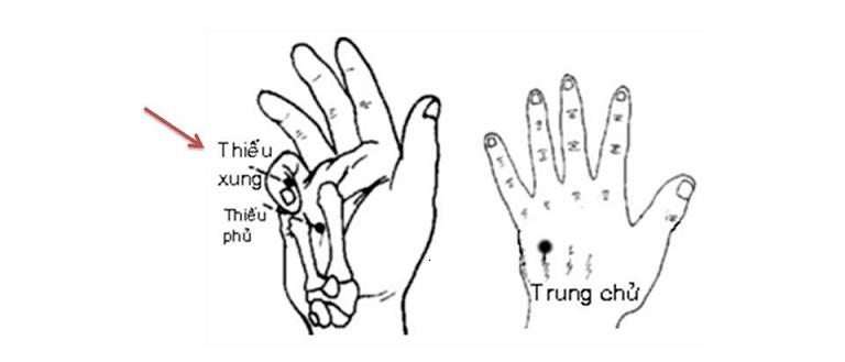 Huyệt vị thứ 9 của kinh Tâm, nằm ở ngón út phía tay quay
