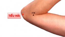 Huyệt Tiểu Hải: Vị trí, Công Dụng, Phương pháp châm cứu bấm huyệt điều trị bệnh