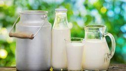 Người bị thoát vị đĩa đệm nên uống sữa gì để cải thiện bệnh tốt nhất?